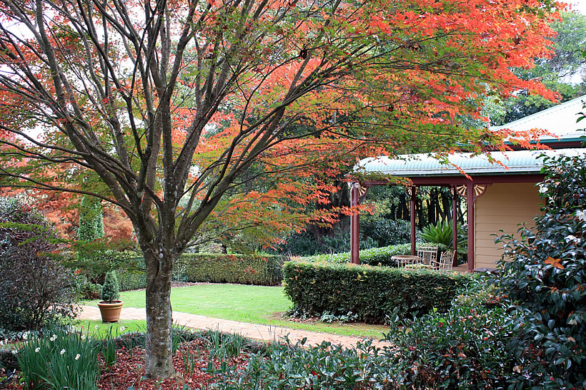 mossgrove bed and breakfast autumn